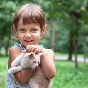 Beautiful little girl holding kitten. Outdoor
